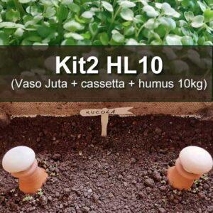 vaso juta con cassetta e humus da 10kg
