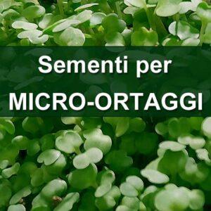 Sementi per Micro-Ortaggi
